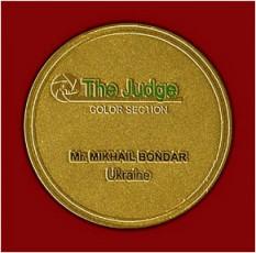 Medal_Judge-2