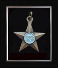 Psa-Bronze-Star